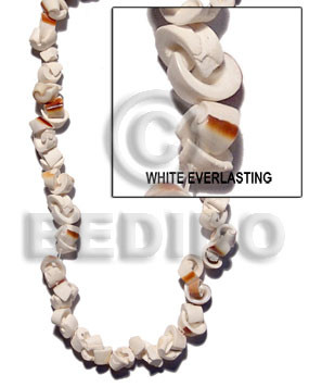 White everlasting shell Crazy Cut Shell Beads