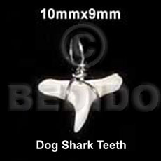 Dog shark teeth pendant 10mmx9mm- Horn Pendants