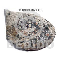 ra unpolished blacktab shells / per kilo - Raw Shells