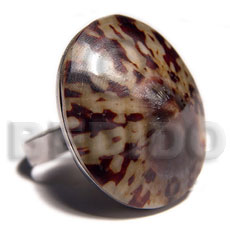 big accent haute hippie oval 28mmx24mm / adjustable metal ring/  polished limpet shell /set for bfj530bl - Rings