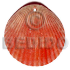 Red piktin clam Shell Pendant