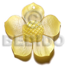 Graduated yellow 30mm hammershell flower Shell Pendant