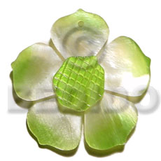 hand made Graduated lime 35mm hammershell flower Shell Pendant