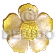 Graduated yellow 25mm hammershell flower Shell Pendants