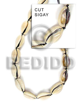 hand made Sigay Whole Shell Beads