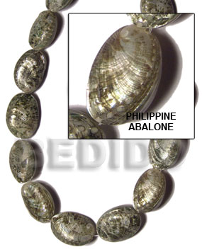 Philippine abalone Whole Shell Beads