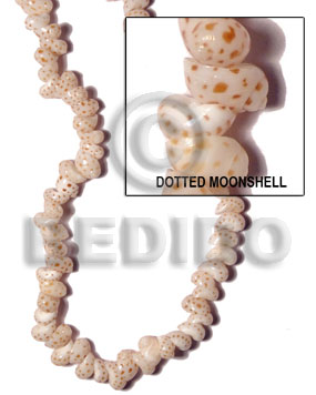 hand made Dotted moonshell Whole Shell Beads